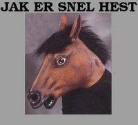 snel hest